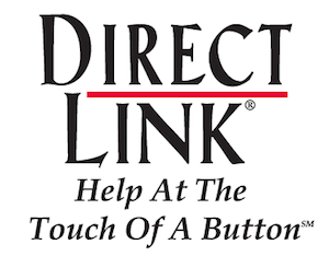 Direct Link Logo Free Book from CEO Gary Green: No Guts, No Glory!