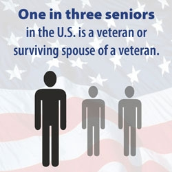 Veterans Care